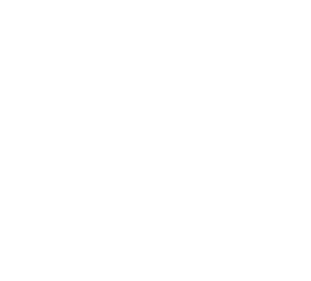 TPI - The Printed Image Logo
